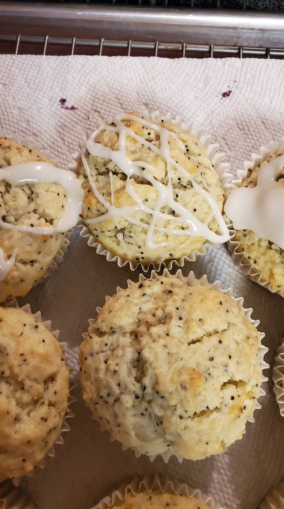 Lemon-poppy-seed-muffins-June-4-2021